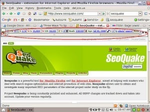 SEOQuake Screen Capture