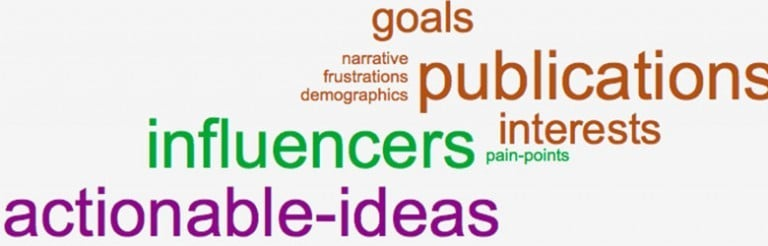 A word cloud. From largest to smallest text size, 9 words as follows: publications, influencers, actionable-ideas, goals, interests, narrative, frustrations, demographics, pain-points.
