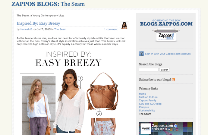 The Steam Zappos blog