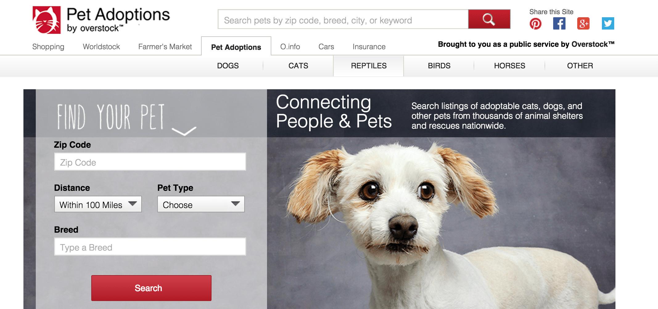 Overstock-pet-adoptions