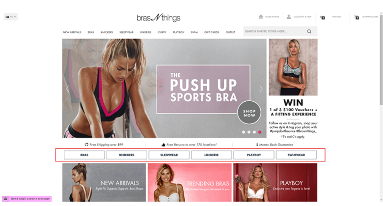 Bras N Things Homepage Screenshot: CRO Case Study