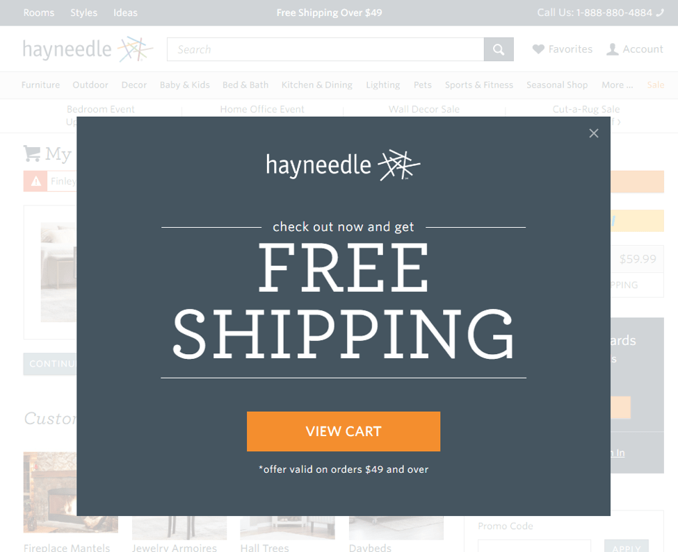 Image of Hayneedle exit offer