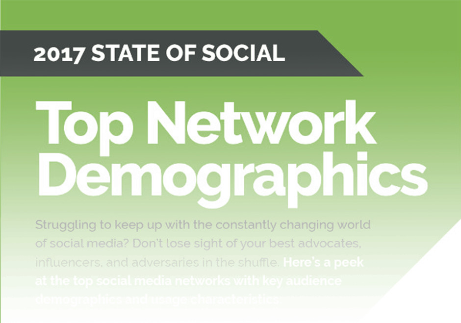 Top Network Demographics INFOGRAPHIC - Preview Image