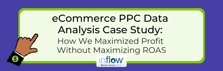eCommerce PPC Data Analysis Case Study: How We Maximized Profit Without Maximizing ROAS