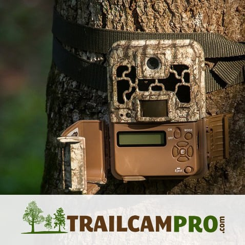 A photograph of a trail camera attached to a tree. Logo: TrailcamPro.com.