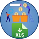 Icon: Campaign Traffic Analysis & Budget Tool. X L S download.