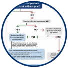 Icon: Out of Stock SEO Flowchart.